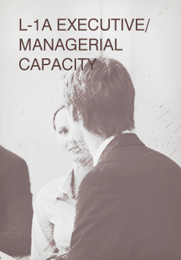 L-1A Executive/Managerial Capacity
